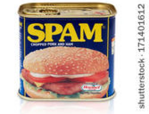 On the Toleration of Content SPAM in Salt Lake City SEO